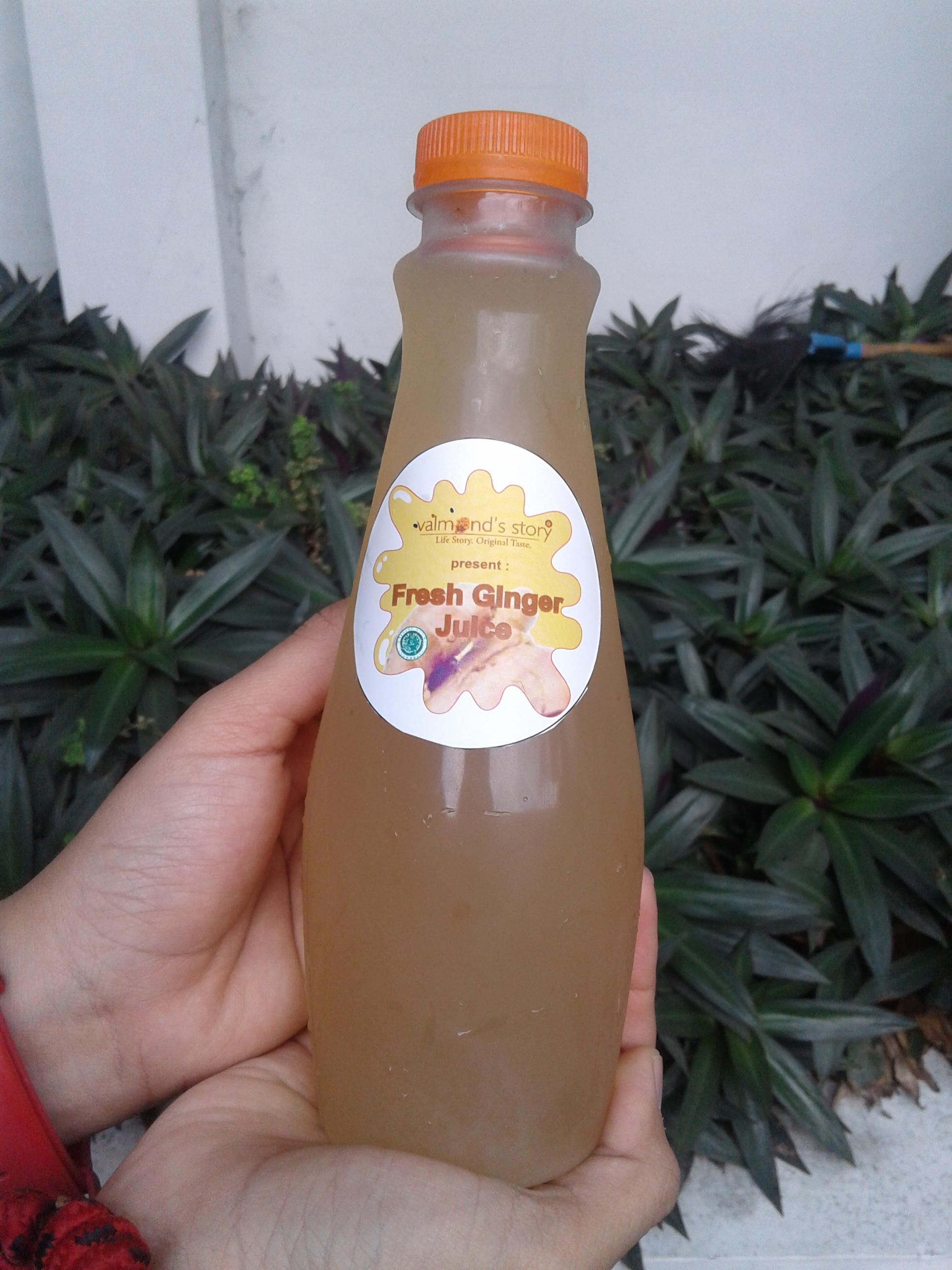 Valmont s Fresh Ginger Juice