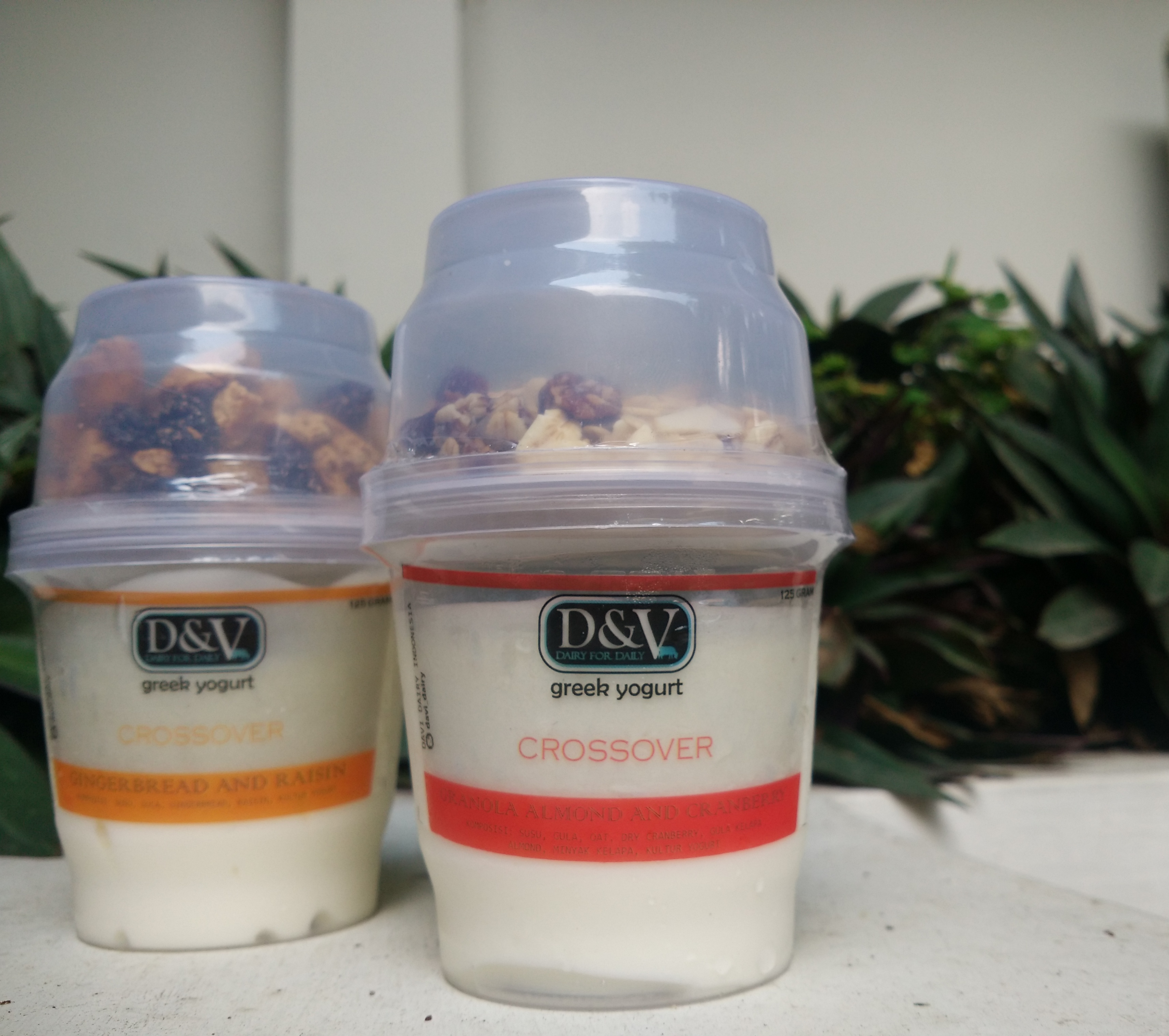 D&V Greek Yoghurt Crossover